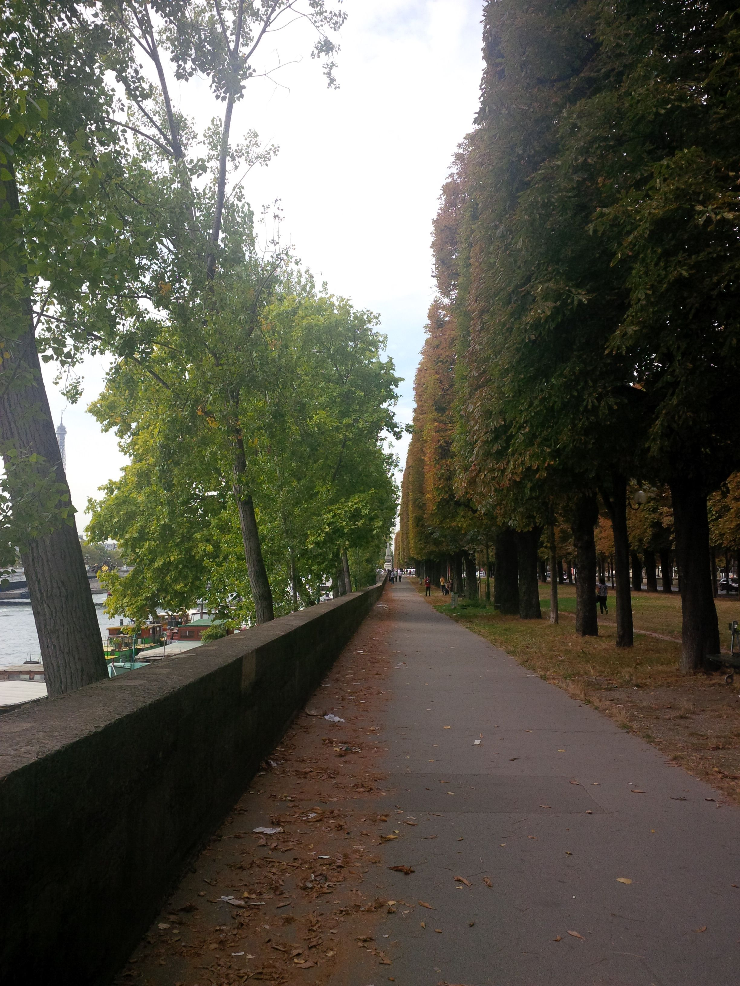 allee2