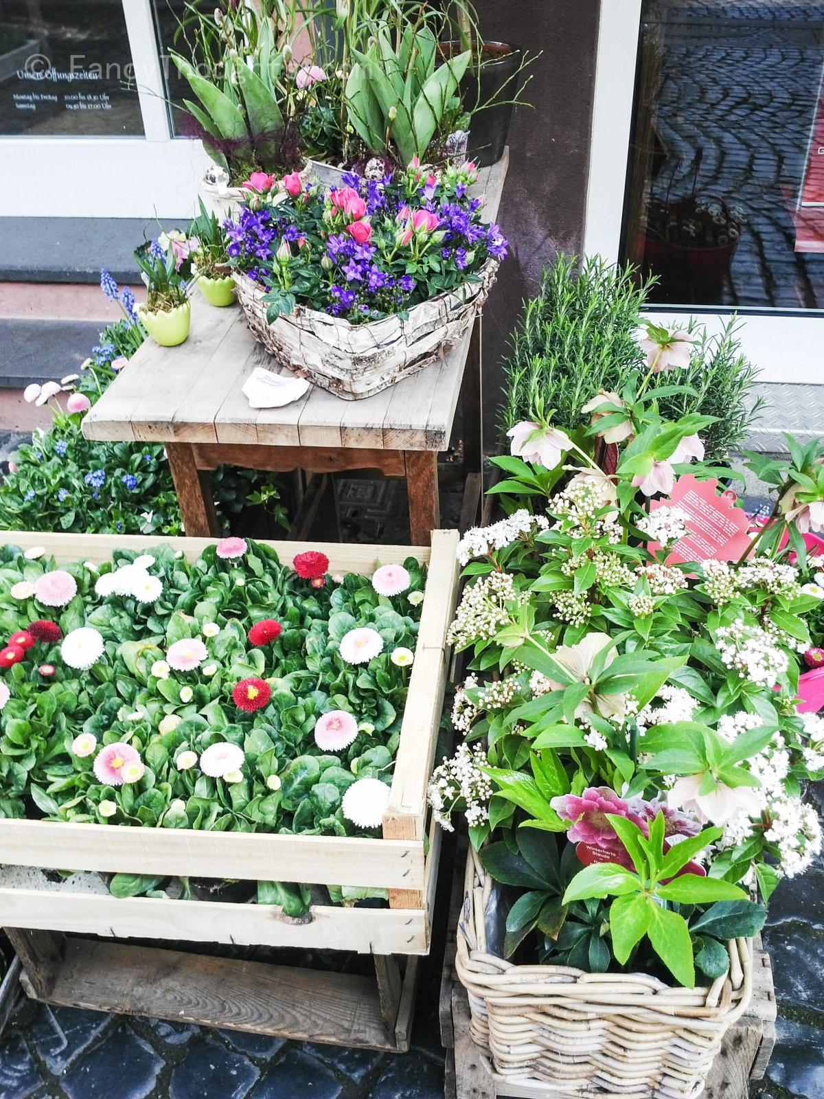 Blumenladen_Mainz