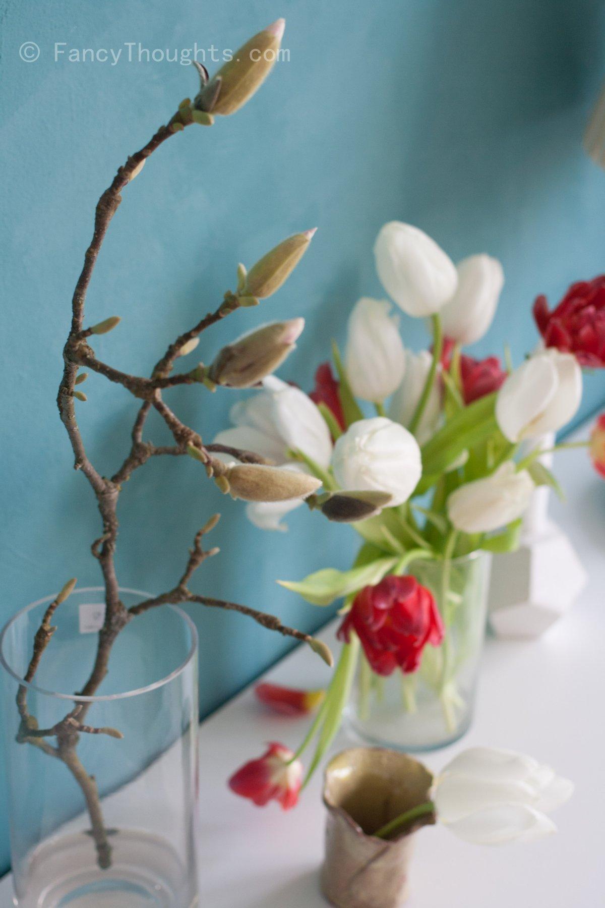 Magnolie-weisse-tulpen